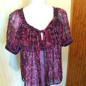 Ava & Grace Petite Sheer Short Sleeve Shirt